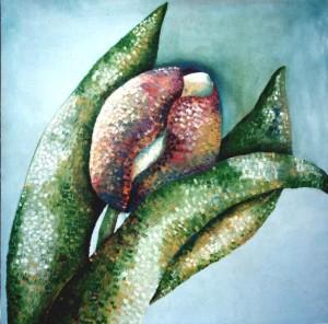 Tulipano – Cod. F3